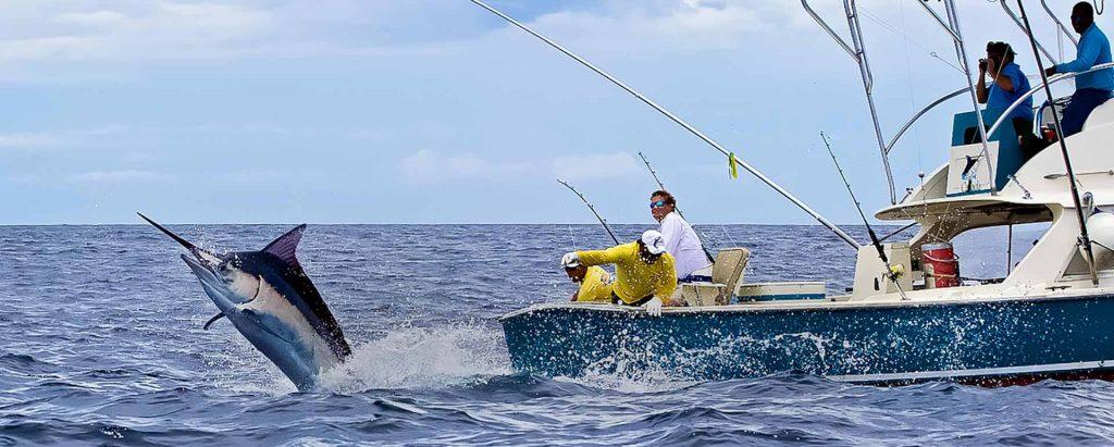 puertovallartafishingcharters