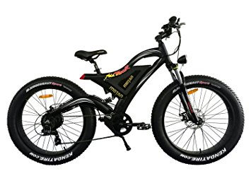 Bringing an electric bike